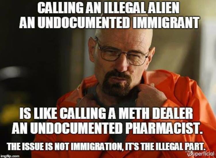 img_4885 undocumented immigrants ⋆ red state meme war